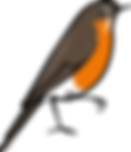 3586-Robin-Character-Poses-4_26_1.png