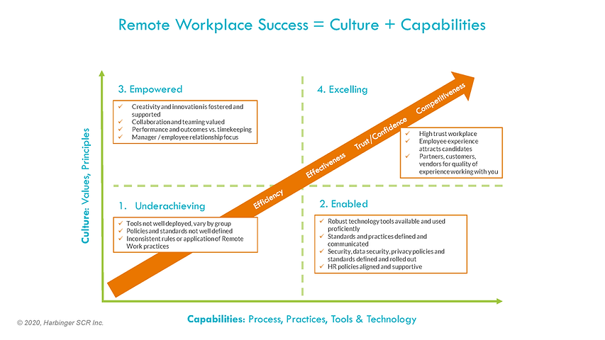 Remote Workplace Success Map.png