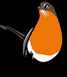 3586-Robin-Character-Poses-4_06.png