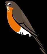 3586-Robin-Character-Poses-4_26.png