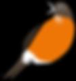 3586-Robin-Character-Poses-4_15.png