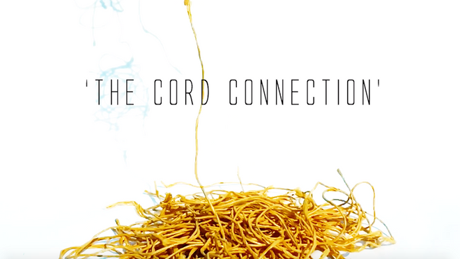 Background movie of The Cord Connection