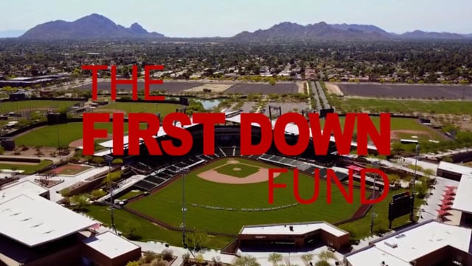 Larry Fitzgerald Celebrity Softball Game 2017