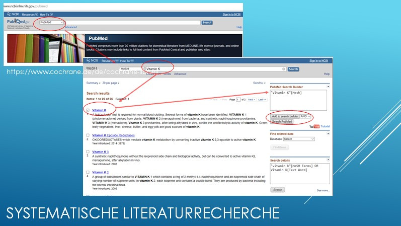 Literaturrecherche bei PubMed mit der Mesh-Term Suche