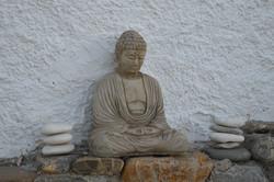 The Zen area