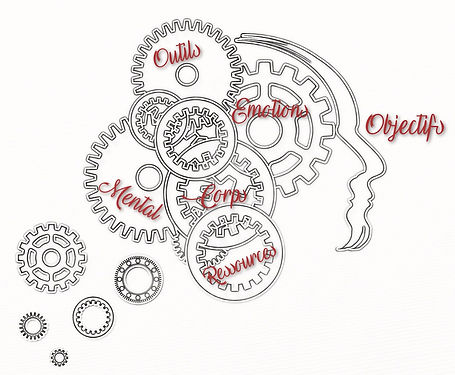 Coaching_cerveau.jpg