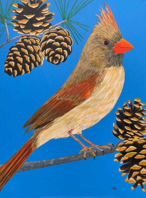 'LADY BIRD'