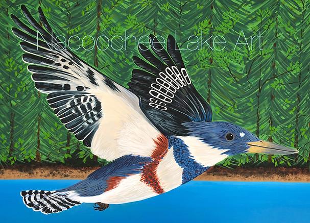 'Kingfisher Flight'