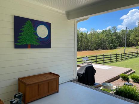 Pine Moon at farm best.jpeg