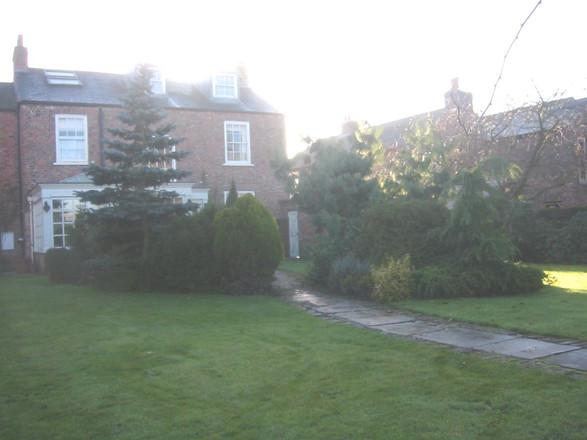The Overgrown Garden Before Garden Design