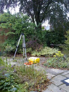 Before Garden Design