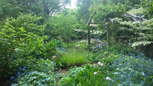 Cottage Garden in Woodland, Calverley, Leeds