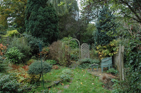 View from the House Before Earthworks Garden Design