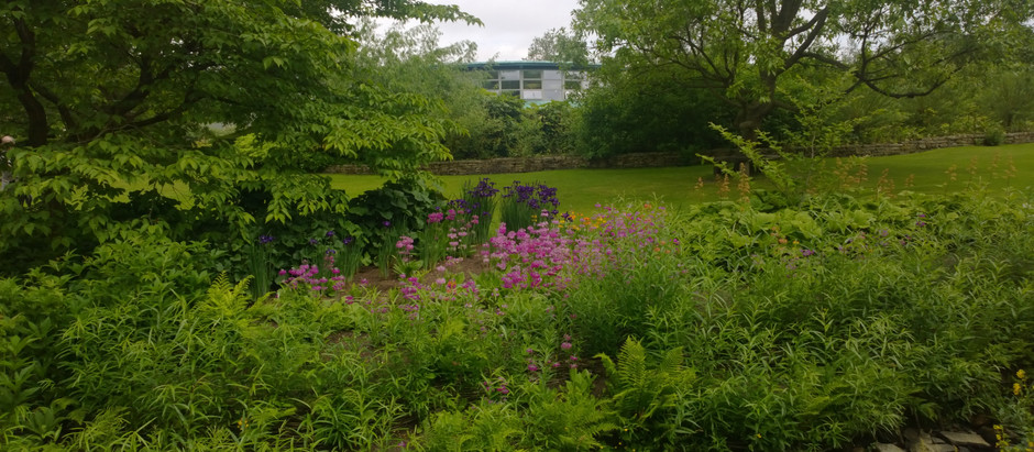 New Course: Forging Ahead with Garden Design at RHS Garden Harlow Carr