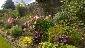 Planting Design for Country House, Grange Moor