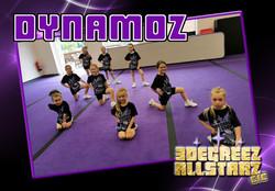 Team Dynamoz