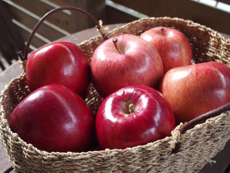りんごは皮も丸かじり