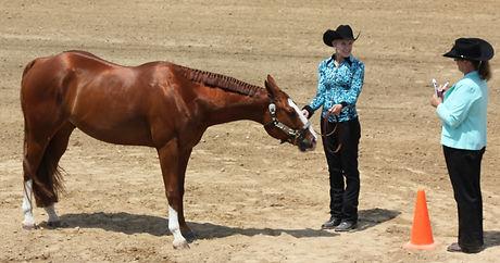 Loc-0625-ka-Horse8.JPG