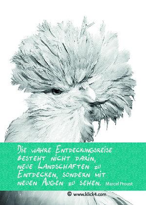 Hühner für die Seele - Hanne