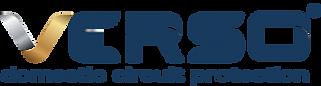 No V VERSO logo blue & gold VCP.png