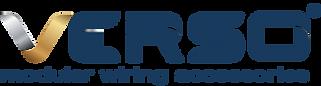 No V VERSO logo blue & gold (r).png