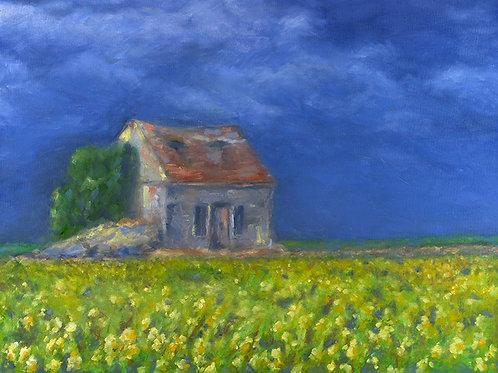 Golden Fields of France