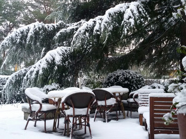 Ya llega la nieve a Guadarrama