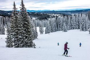 Skiers (people) skiing the snowy winter