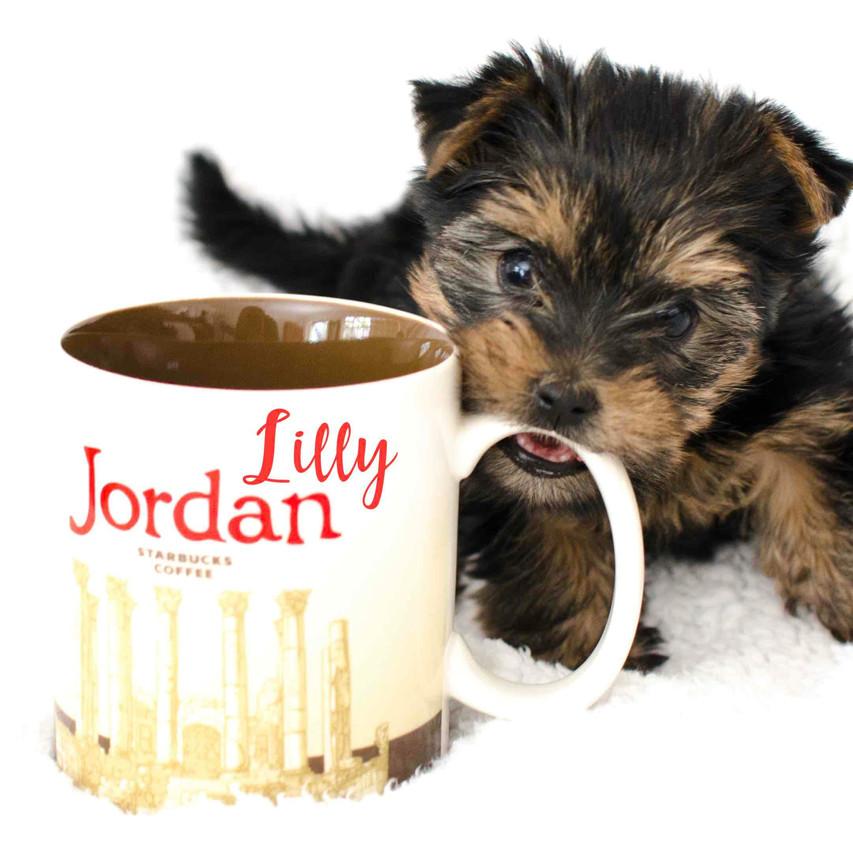 Lilly Jordan Mugg