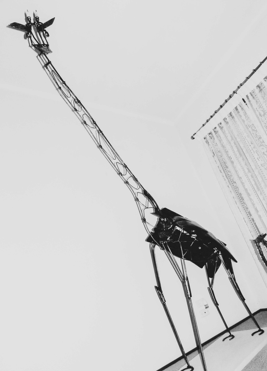 Shovelenalong Mudgee 2016.jpg