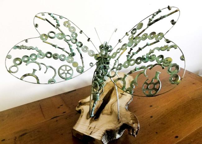 ButterflyI.jpg