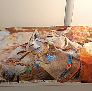 beddensprei sjaal van heleen (1).jpg