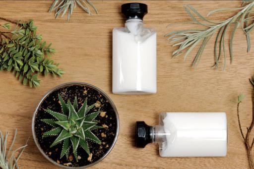 exportar cosméticos naturais