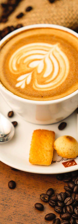 exportar café
