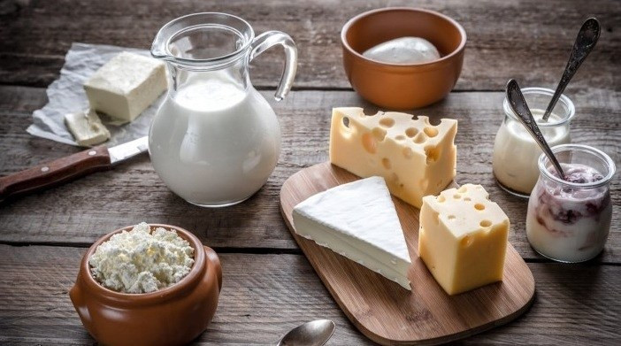 exportar leite