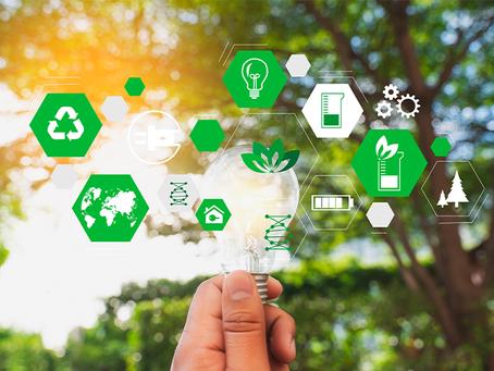 Sustentabilidade no Comércio Exterior