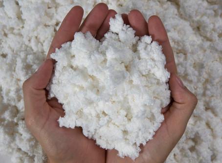 Setor Florestal e Celulose: um mercado de oportunidades
