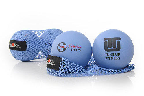 Yoga Tune up Therapy Ball Pair in Tote (small)