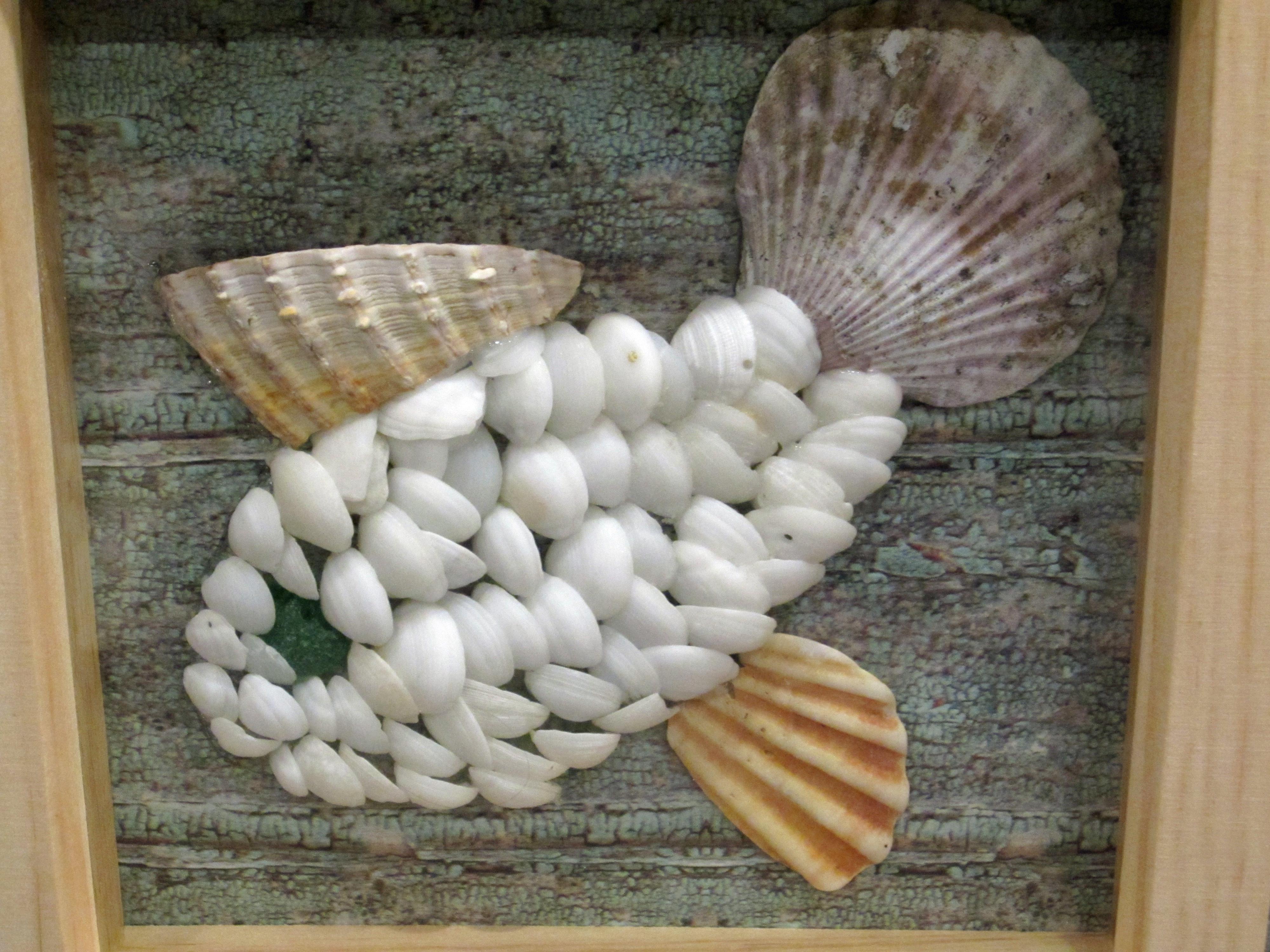 Shell fish 2