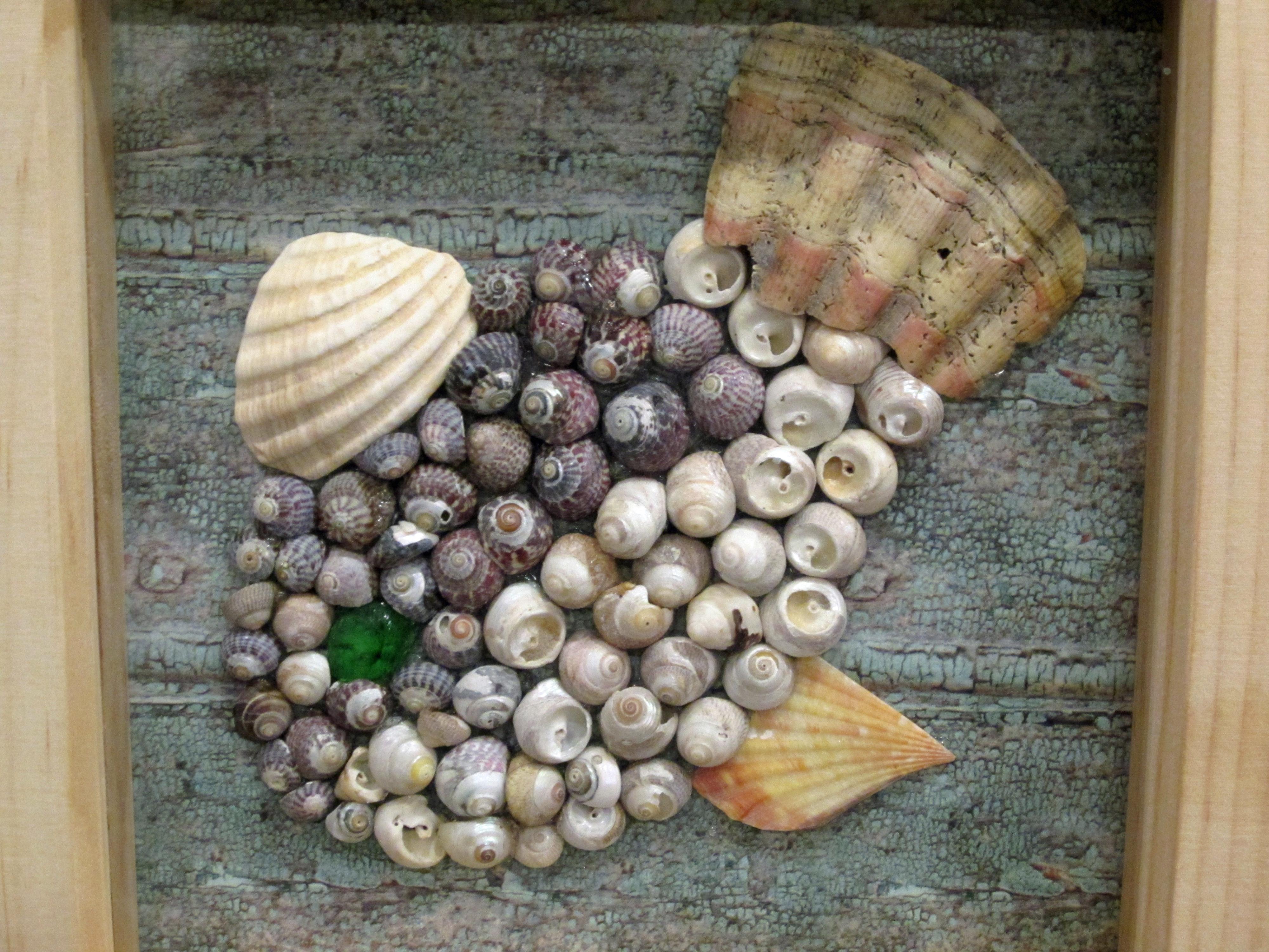 Shell fish 1