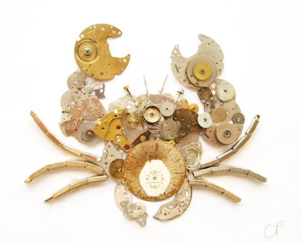 Stoptick Crab