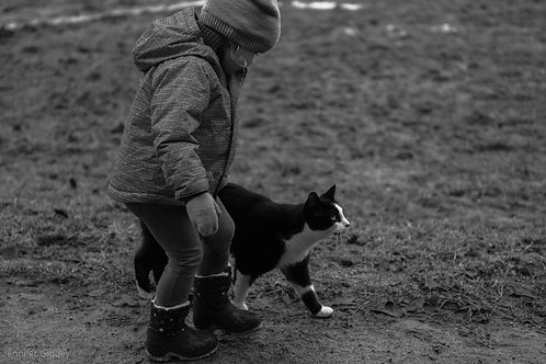Apprendre la Communication Animale