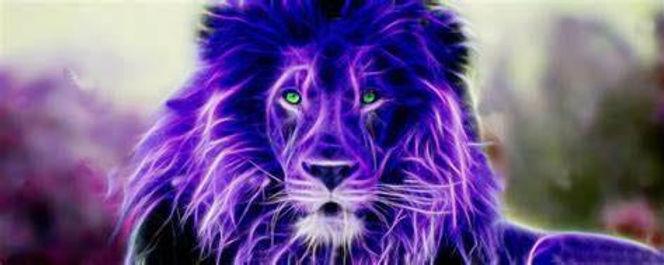 WIde Green Eyed Lion.jpg