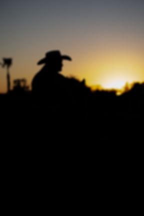 Meganandherhorses-97.jpg