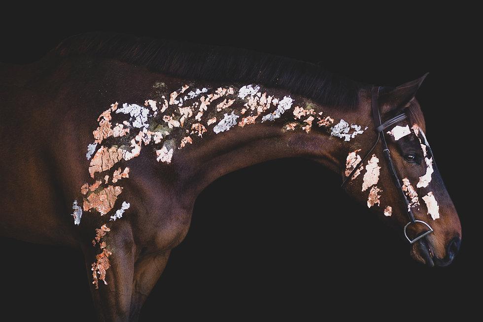 vino_leaf-1.jpg