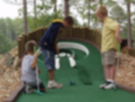Wild Wedge Mini Golf.jpg