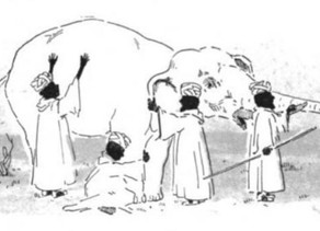 The Elephant of Complex Systems Change