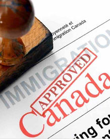 new immigrant medical insurance