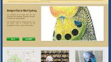 West Sydney Budgies arrives on the interweb // super highway...