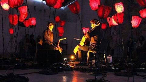 spectacle coquelicots musicaux et lumineux Big événement ciel normandie
